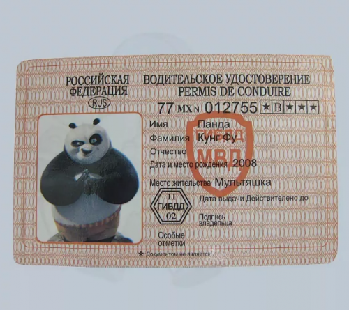 гостиный прикольные водительские права в картинках главное производстве