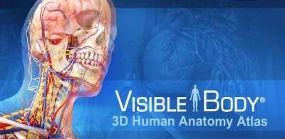 Скачать visible body 3d anatomy atlas торрент
